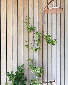 Copper Outdoor Showers Australia Copper Outdoor S Copper Wall, Copper And Brass, Indoor Outdoor Bathroom, Outdoor Showers, Copper Shower Head, 15mm Copper Pipe, Cold Water Shower, Shower Rose, Brass Tap