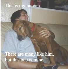 This is my human.....