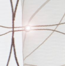 Technology - Illuminated Textiles ForsterRohner.com