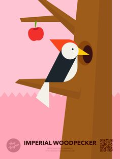 Play Tangram 'Nature'_Endangered friends collections