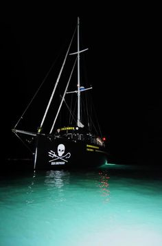 Sea Shepherd Conservation Society ~ worth knowing about & supporting!! ~ click on image for link to their webpage ( www.seashepherd.org )