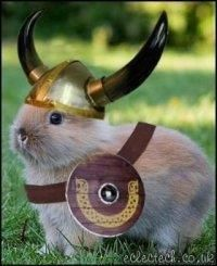 Warrior Bunny