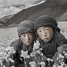 Gallery | PHIL BORGES PRODUCTIONS storytelling for social change Children of Tibet