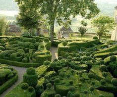 From the Tree Museum of Zurich, Switzerland.