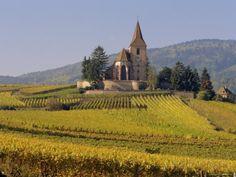 N'oubliez pas de visiter la serre aux papillons.  Church in Vineyards, Hunawihr, Haut-Rhin - Alsace