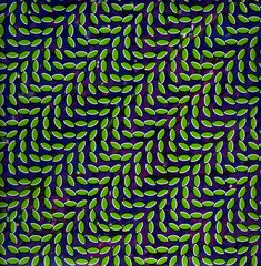 Animal Collective, Merriweather Post Pavilion