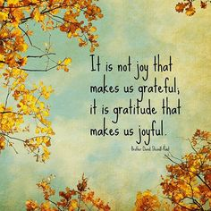 #attitudeofgratitude ✨ What are you thankful for today? #yourzenlife #gratitude #gratefulheart #thankful #bethechange #lifesblessings #positivity #inspire
