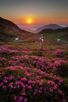 Ideas spring nature landscape national parks for 2019 Beautiful Sunset, Beautiful World, Beautiful Images, Landscape Photography, Nature Photography, Spring Nature, Scenery Wallpaper, Mountain Pictures, Nature Scenes