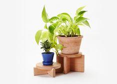 Plant Pedestals