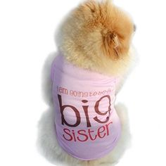 Outtop Pet Clothes Big Sister Small Dogs Ghost Coat Shirt Apparel Costume Accessory for Dog Dachshund Poodle Pug Chihuahua Shih Tzu Yorkshire Terriers Papillon M Purple *** You can get additional details at the image link. (Note:Amazon affiliate link)
