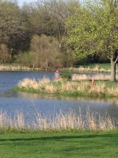 Round Barn DGC in Manhattan, IL - Disc Golf Course Review