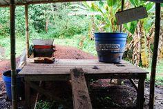 Hier wird der Kaffee vor dem Waschen entpulpt, also das Fruchtfleisch entfernt.  mehr Informationen auf der Five Roasters-Homepage www.fiveroasters.de/blog/ecuador-august-2014