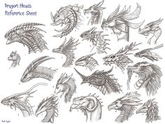 dragon faces   archir_dragon-heads-reference-sheet1.jpg