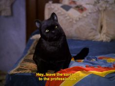 When your mom says something snarky | 27 Times Salem The Cat Understood You