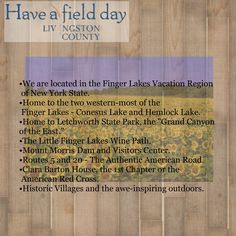Just SOME of what Livingston County, NY has to offer. FingerLakesWest.com