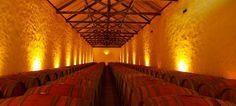 Herdade da Comporta lança novos vinhos | ShoppingSpirit