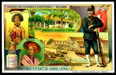 "Liebig's Beef Extract  ""Colonies of the European Powers""  Belgian issue, 1910. Holland ~ Borneo ~ Java ~ Indonesia"