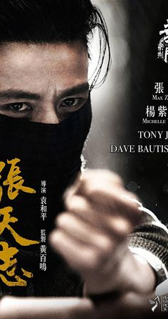 Directed by Woo-Ping Yuen.  With Jin Zhang, Dave Bautista, Michelle Yeoh, Tony Jaa.