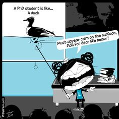 PhD cartoon from Phdelirium/ A PhD stduent is like a duck...