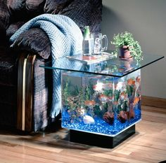 End table aquarium.  Saves space by having both in one piece.  Multipurpose furniture...love it!
