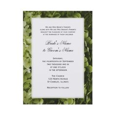 Annabelle #Hydrangea #Wedding #Invitation http://www.zazzle.com/loraseverson* Customize with your names and wedding date  Invite your friends and family to your upcoming nuptials with this elegant light green Annabelle Hydrangea Wedding Invitation. Personalize it with the names of the bride and groom and specific details of your wedding. This pretty custom floral wedding invite features a nature photograph of a light green Annabelle hydrangea flower blossom.