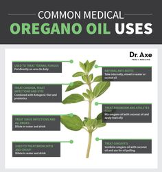 Oregano Oil Health Uses Chart Natural Medicine ~ Interested in PURE™ Essential Oils? Let's Connect! Email me at livegreenwithginny@gmail.com #PURE™ #EssentialOils #Melaleuca