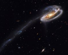 The Tadpole Galaxy (also known as UGC 10214 or Arp 188) is a disrupted barred spiral galaxy located about 420 million light-years away toward the northern constellation Draco. Its most dramatic features are an incredibly long trail of stars and massive, bright blue star clusters. Its distorted shape was caused by a small intrudor, a very blue, compact, galaxy which crossed in front of the Tadpole Galaxy and was slung around behind the Tadpole by their mutual gravitational attraction.