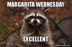 I always make posters for students to hang on their lockers when the graders come to tour our school. That way, they see ads for orches. Funny Animal Pictures, Funny Animals, Dog Pictures, Funny Easter Memes, Funny Wednesday Memes, Future Band, Funny Quotes, Funny Memes, Hilarious