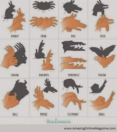 Guide to making animal shadows
