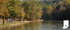 Indiana - Brown County State Park - 270 miles/5 hours - Site 14, 52, 104, 105 (most of Buffalo Ridge Campground would be good for group camping)