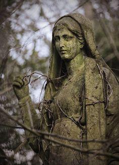 Abney Park Cemetery   London, England