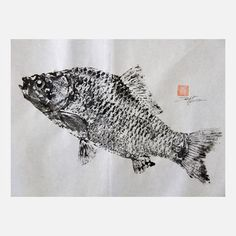 Crucian Carp 19.5x14  by Fishing for Gyotaku