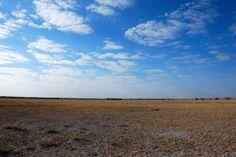 A rare cloudy sky in the Kalahari desert.