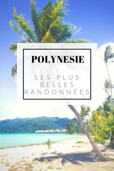 Fiji Islands, Cook Islands, Bora Bora, Bon Plan Voyage, Kauai Hawaii, Blog Voyage, Italy Vacation, Future Travel, Honeymoon Destinations