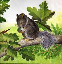 vignette design: Squirrels, Acorns and Oak Leaves, Oh My!