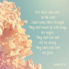 The Lord is renewing our strength to wait on His timing. What makes waiting worthwhile? http://collectmythoughtsblog.wordpress.com