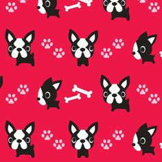 Cute French Bulldogs - Red by boredinc, Spoonflower digitally printed fabric, wallpaper, and gift wrap Mini French Bulldogs, Dog Socks, Chalk Pastels, Pet Loss, Dog Gifts, Surface Design, Cute Wallpapers, Spoonflower, Fur Babies