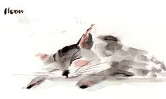 lucyeldridgeillustration:  Meow