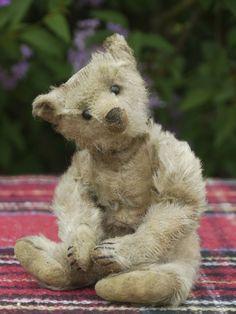 That face! Old Teddy Bears, Steiff Teddy Bear, Antique Teddy Bears, My Teddy Bear, Love Bear, Bear Doll, Old Toys, Felt Animals, Vintage Toys