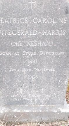 While visiting a family grave in Annagh Cemetary between Blennerville and Curraheen, on the Tralee to Dingle road, I came upon the grave of Beatrice Caroline Fitzgerald-Harris nee Nesham Family History, Genealogy, Art Quotes, Roots, Irish, Irish Language, Ireland