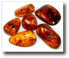 Amber is also known