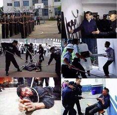 Doğu Türkistan'da zulüm arşa dayanmışken araplara ümmet diye ağlayanlar, Türk'ün yaşadığı zulme sessiz kalan ruh körlerine sağırlarına yazıklarolsun... Türkistan kan ağlıyor!!! China, Science Fiction, Politics, Education, History, Sports, Sisters, Sci Fi, Hs Sports