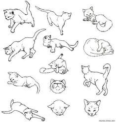 #Животные