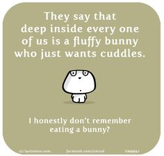 They say that deep inside every one of us is a fluffy bunny who just wants cuddles. I honestly don't remember eating a bunny? Great Quotes, Me Quotes, Motivational Quotes, Qoutes, Cool Words, Wise Words, Cuddle Quotes, Last Lemon, Thought Provoking