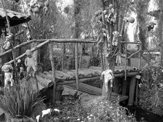 Discover the Creepy History of the Island of Dolls in the Xochimilco Canals near Mexico City.