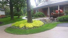 Mount Pleasant Cemetery Mount Pleasant, Cemetery, Golf Courses, Plants, Flora, Plant, Planting