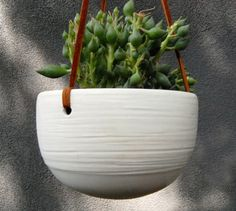hanging planter - DIY from a bowl and leather straps?