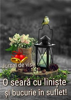 Clara Alonso, Bird Feeders, Good Night, Romantic, Outdoor Decor, Home Decor, Nighty Night, Decoration Home, Room Decor