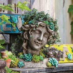 Adding plant life to your home or garden can make a huge difference in the look and feel. Not only do plants look lovely and lush, but they actually serve to cl