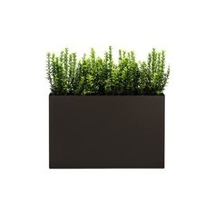 Modern Trough Planter, Bronze, Low ❤ liked on Polyvore